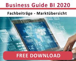BI Guide 2020
